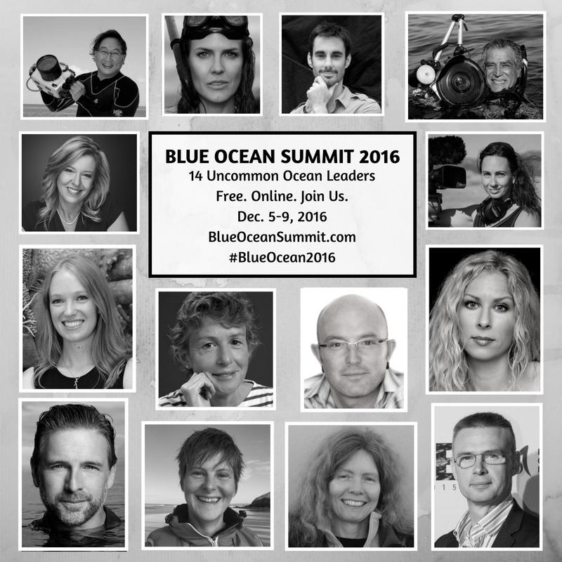 blue-ocean-summit-2016-speaker-mosaic