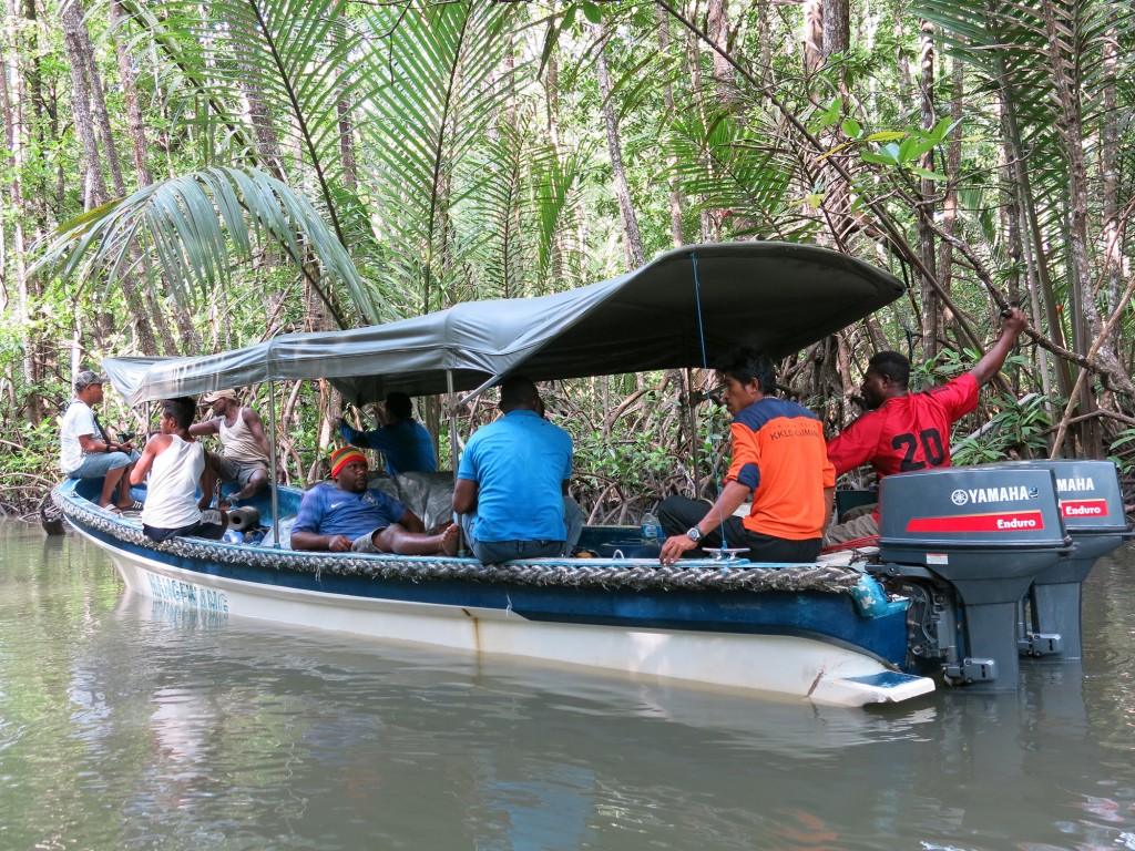 Monitoring team entering mangrove forest