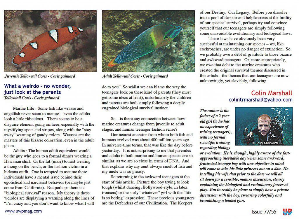 Juv Fish full_Page_5