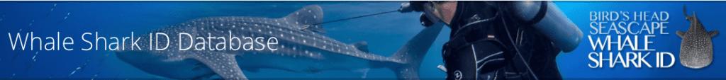 Screen shot Whale Shark ID